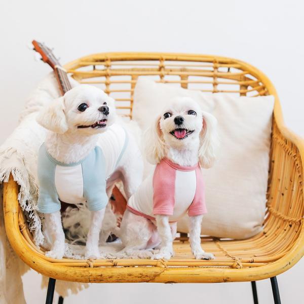 アルファベットラグランTシャツ     ,XXL  犬 服 犬の服 ドッグウェア Tシャツ  秋 冬 おしゃれ かわいい パステル コットン 綿100% プリント|best-friends|02