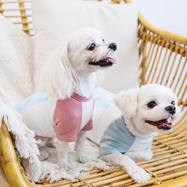アルファベットラグランTシャツ     ,XXL  犬 服 犬の服 ドッグウェア Tシャツ  秋 冬 おしゃれ かわいい パステル コットン 綿100% プリント|best-friends|04