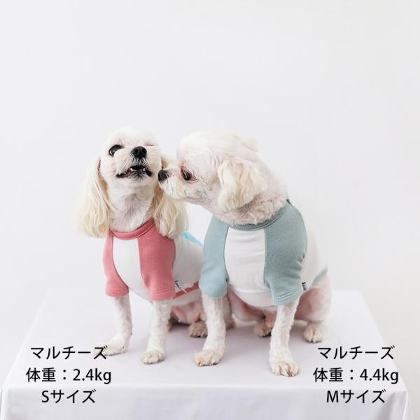 アルファベットラグランTシャツ     ,XXL  犬 服 犬の服 ドッグウェア Tシャツ  秋 冬 おしゃれ かわいい パステル コットン 綿100% プリント|best-friends|05