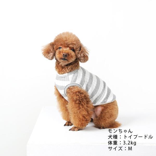 BF ボーダータンク   ,XXL犬服 犬の服 ドッグウェア夏 タンクトップ ノースリーブ スタッフ  綿 コットン 100%|best-friends|02