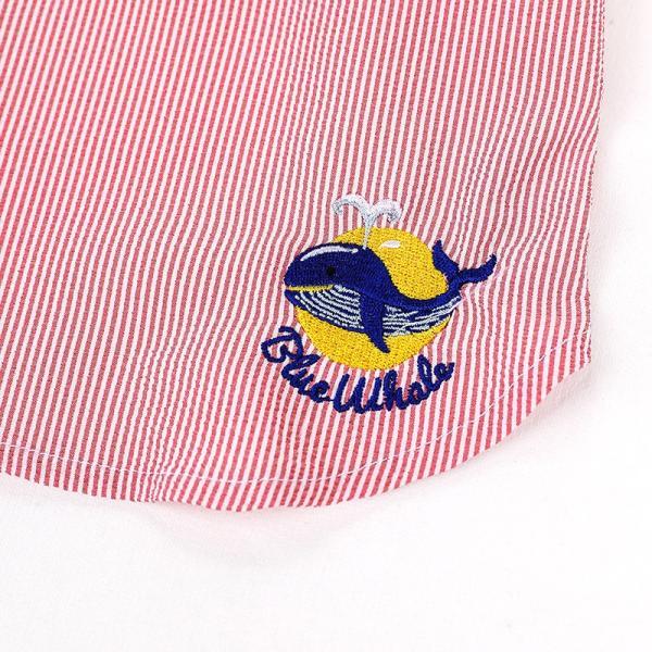 シアサッカー ストライプ シャツ      犬 服 夏 クール 犬の服 ドッグウェア シャツ おしゃれ スナップボタン best-friends 18