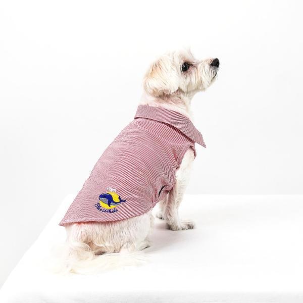 シアサッカー ストライプ シャツ      犬 服 夏 クール 犬の服 ドッグウェア シャツ おしゃれ スナップボタン best-friends 07