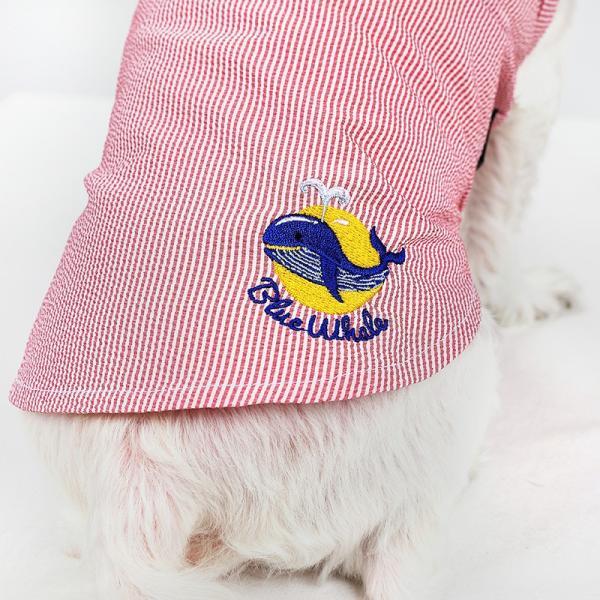 シアサッカー ストライプ シャツ      犬 服 夏 クール 犬の服 ドッグウェア シャツ おしゃれ スナップボタン best-friends 10