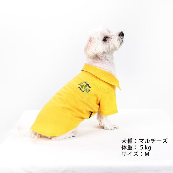 シアサッカー アロハシャツ      犬 服 夏 クール 犬の服 ドッグウェア シャツ おしゃれ スナップボタン|best-friends|02