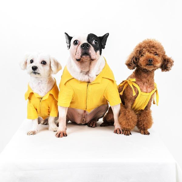 シアサッカー アロハシャツ      犬 服 夏 クール 犬の服 ドッグウェア シャツ おしゃれ スナップボタン|best-friends|17