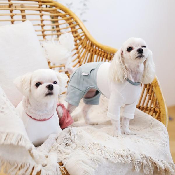 ツートーンポケットロンパース     犬 服 犬の服 ドッグウェア  ロンパース かわいい おしゃれ 秋 冬 ロールアップ 刺繍 パステル|best-friends|05