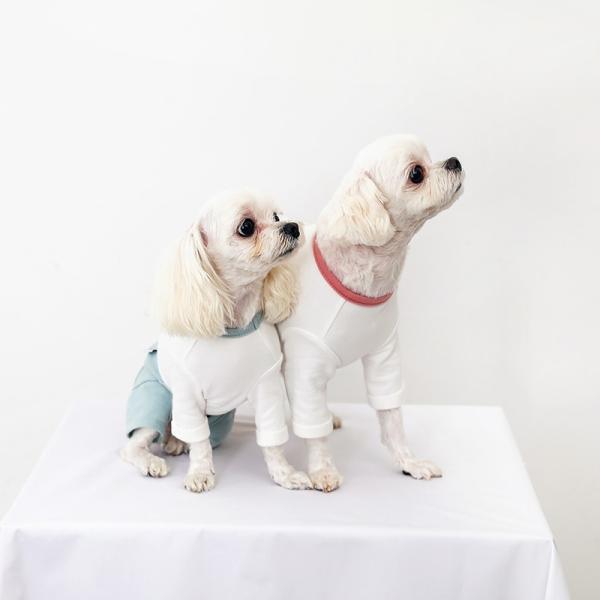 ツートーンポケットロンパース     犬 服 犬の服 ドッグウェア  ロンパース かわいい おしゃれ 秋 冬 ロールアップ 刺繍 パステル|best-friends|07