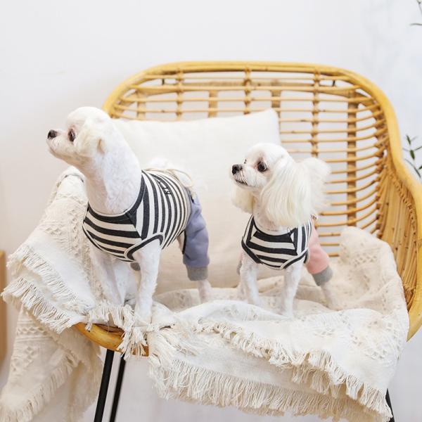 スリーブレスボーダーロンパース   ,XXL 犬 服 犬の服 ドッグウェア  ロンパース かわいい おしゃれ 秋 冬 ボーダー 伸縮 伸びる 刺繍 パステル|best-friends|02