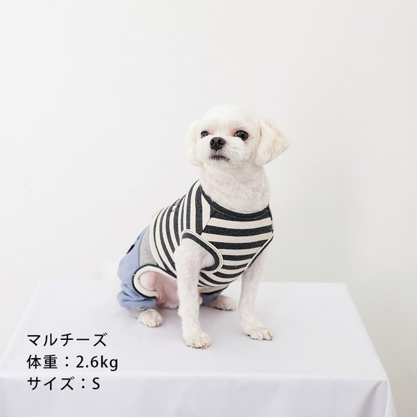 スリーブレスボーダーロンパース   ,XXL 犬 服 犬の服 ドッグウェア  ロンパース かわいい おしゃれ 秋 冬 ボーダー 伸縮 伸びる 刺繍 パステル|best-friends|06