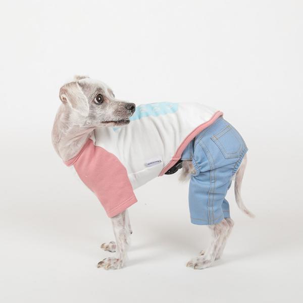 デニム パンツ      犬 服 犬の服 ドッグウェア デニム パンツ ズボン ジーパン ジーンズ ストレッチ|best-friends|08