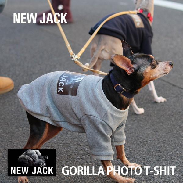 【NEW JACK】ゴリラフォトTシャツ / S,M,L  犬 服 犬の服 ドッグウェア 3M リフレクター 夜間 反射 プリント アニマル おしゃれ ストリート ブランド|best-friends