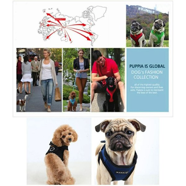 PUPPIA パピア ソフトベストハーネス XS,S,M,L小型犬 中型犬 ハーネス ベストハーネス メッシュ 通気性 ペット 胴輪 犬 ドッグ|best-friends|03
