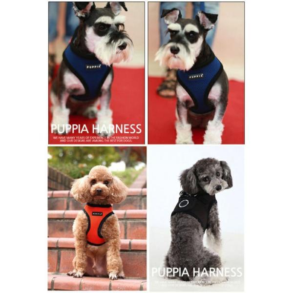 PUPPIA パピア ソフトベストハーネス XS,S,M,L小型犬 中型犬 ハーネス ベストハーネス メッシュ 通気性 ペット 胴輪 犬 ドッグ|best-friends|06