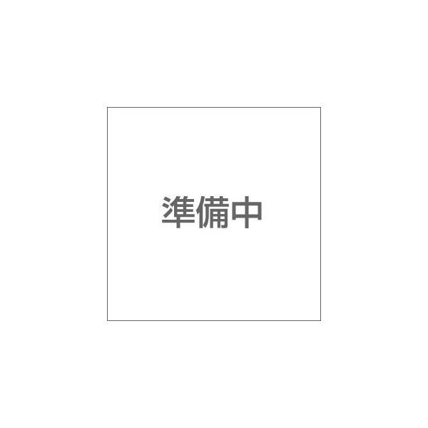 ラングスジャパン ルームブーム