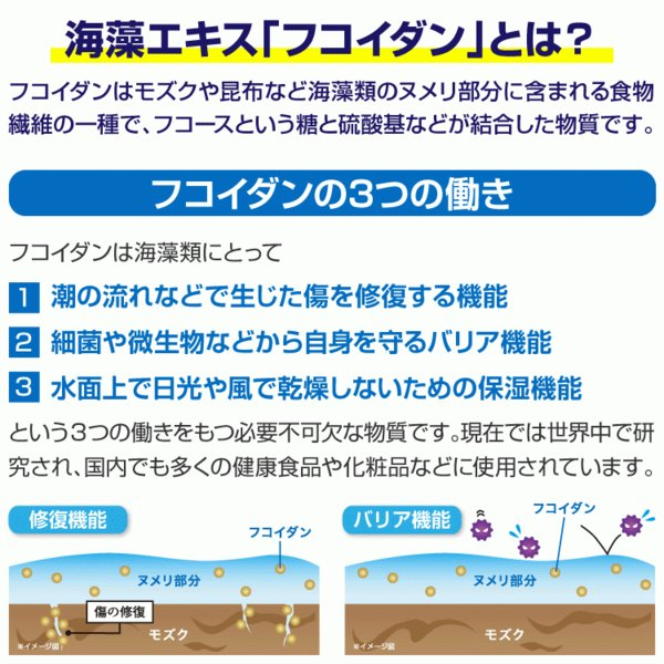 フコイダンサプリ フコイダンライフ・ナノ 6箱セット 低分子 高分子 フコイダンエキス|bh-labo24|03