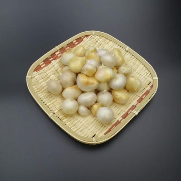 にんにく サイズ不選別 ばら玉混在 送料無料 おかやま備中たかはし産ニンニク1kg|bicchu|03