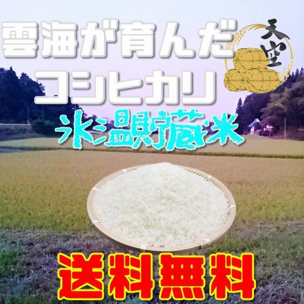 コシヒカリ 新米 20kg令和元年産 送料無料 岡山 備中産 発送当日精米|bicchu