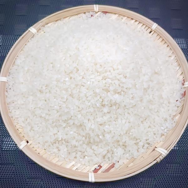 コシヒカリ 新米 20kg令和元年産 送料無料 岡山 備中産 発送当日精米|bicchu|03