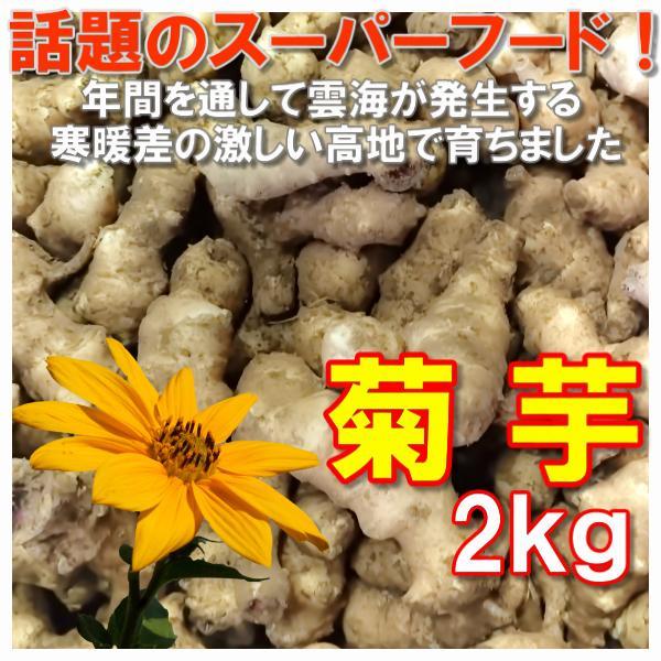 菊芋生 土つき 2kg キクイモ きくいも 農薬化学肥料不使用 国産おかやま備中産  シーズン終了間近|bicchu