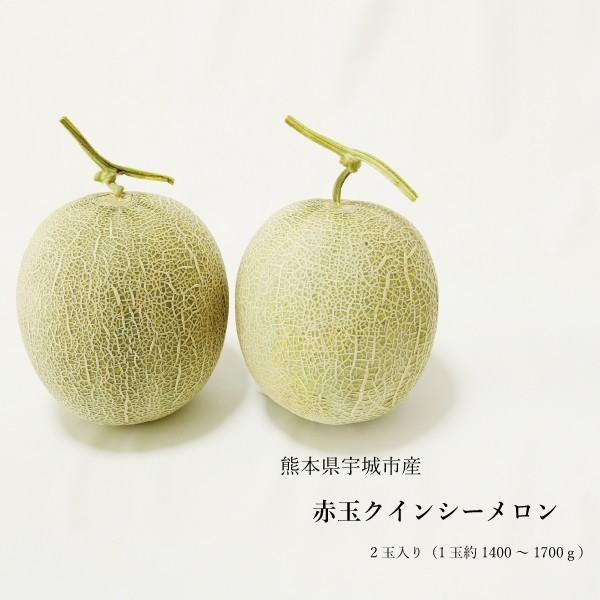 送料無料 熊本県産 クインシーメロン 赤肉 2玉 ギフト用 農家直送 贈答用 贈り物 母の日 プレゼント
