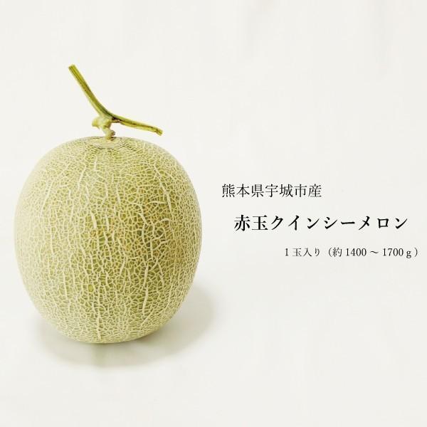 送料無料 熊本県産 クインシーメロン 赤肉 1玉 ギフト用 農家直送 贈答用 贈り物 母の日 プレゼント