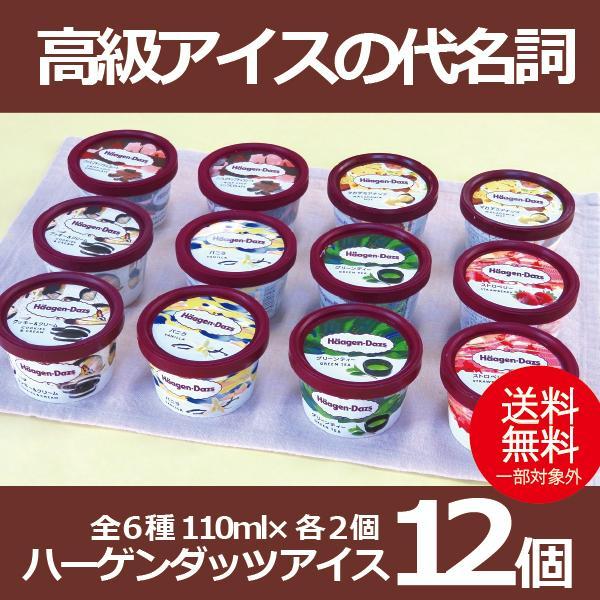 お中元 御中元 ギフト アイスクリーム 送料無料 ハーゲンダッツアイス12個セット 冷凍便