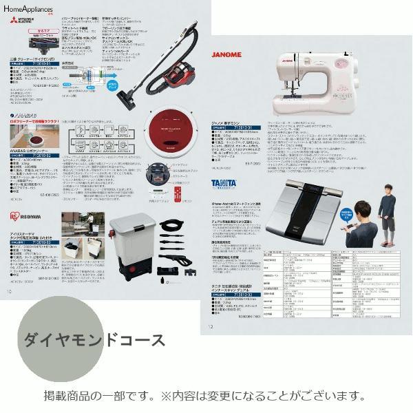 カタログギフト ダイヤモンド (宅配便) 50800円コース(税込 54864円コース) bighand 06