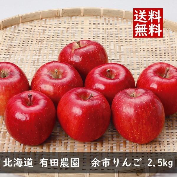 (季節限定 2018年11月上旬〜2月下旬 ※シーズン中のみ) 北海道 有田農園 余市りんご 2.5kg (代引不可・送料無料)|bighand