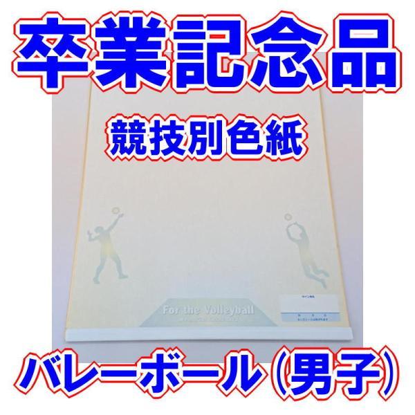 卒業記念品 部活 競技別色紙(男子バレー)|bigsports