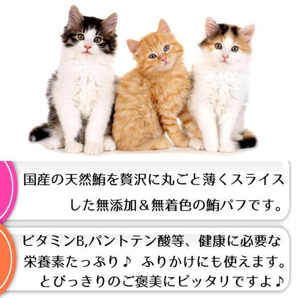 猫 おやつ 猫のおやつ キャットフード 無添加 安全 猫用おやつ 安全 国産 国産猫のおやつ 無着色 猫用ふりかけ 魚 まぐろ ジャーキー 長持ち 最高級|bijouterieshop|02