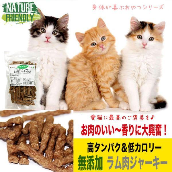 猫 おやつ 猫のおやつ キャットフード 無添加 国産 ペットフード 安全 猫用おやつ 猫用ふりかけ ラム肉 羊肉 低カロリー 低脂肪 ジャーキー 長持ち 最高級