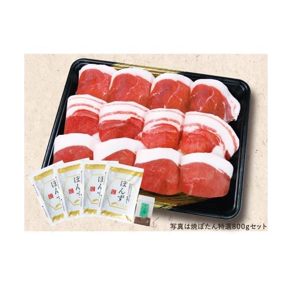 BBQ!焼き肉用「ぼたん肉(猪肉)300g(スライス済)」セット(送料込)(「食べ方のしおり」付)