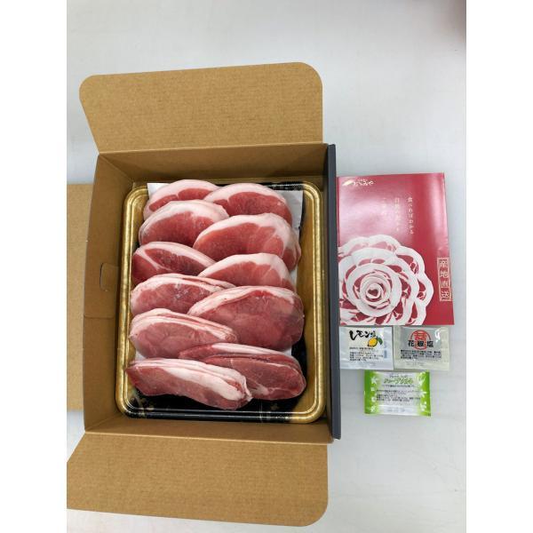 BBQ!焼き肉用「ぼたん肉(猪肉)600g(スライス済)」セット(送料込)(「食べ方のしおり」付)