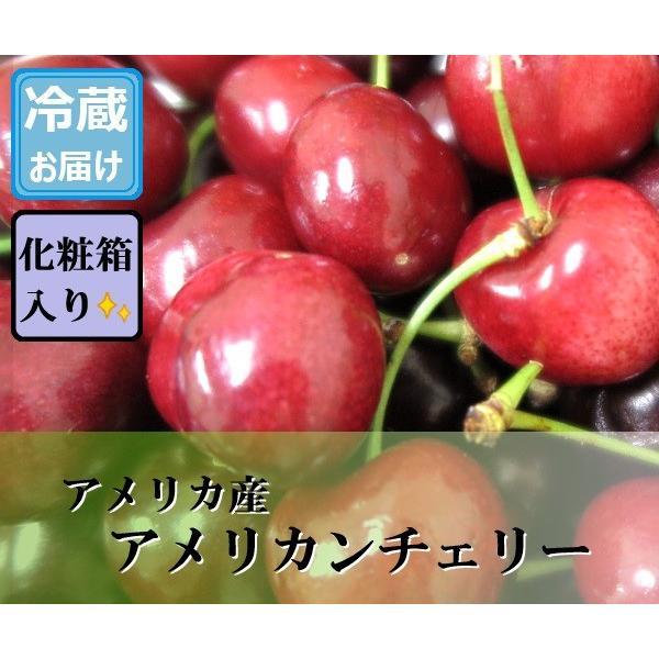 アメリカンチェリー 約1.5kg アメリカ産|bimi-shunka
