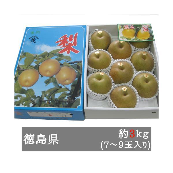 中村さんの幸水梨 約3kg(7‐9玉入り) 徳島県産