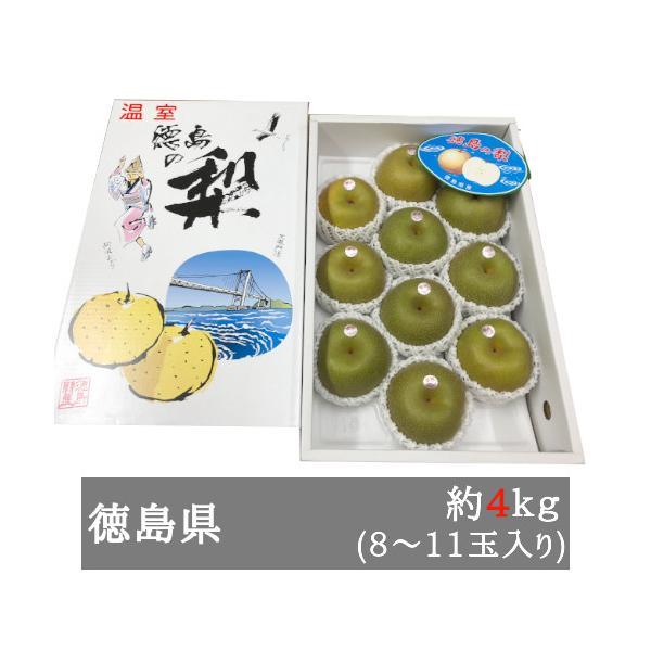 鳴門の幸水梨 約4kg(8−11玉入り) 徳島県産