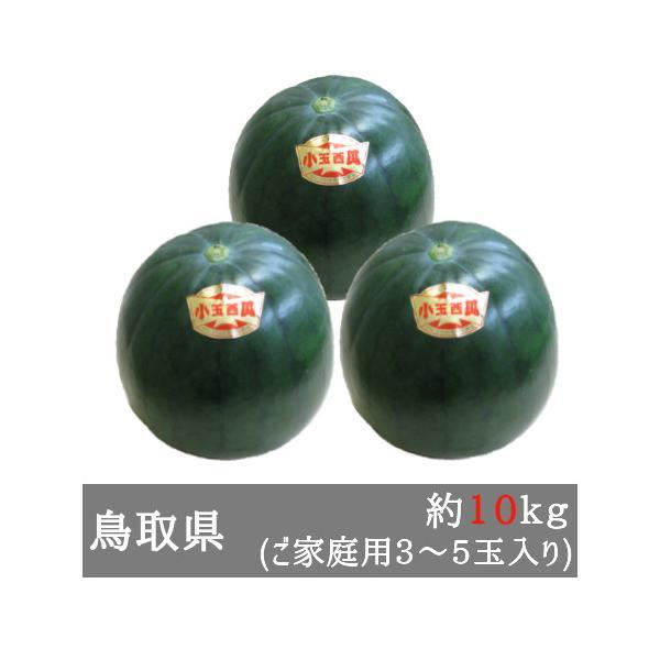 大栄の黒小玉すいか 家庭用3-5玉入り(約10kg) 鳥取県産