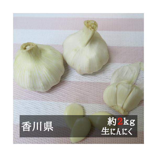(5月上旬以降発送)生にんにく 約2kg 香川県産|bimi-shunka
