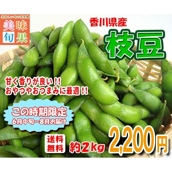 枝豆 約2kg 香川県産|bimi-shunka