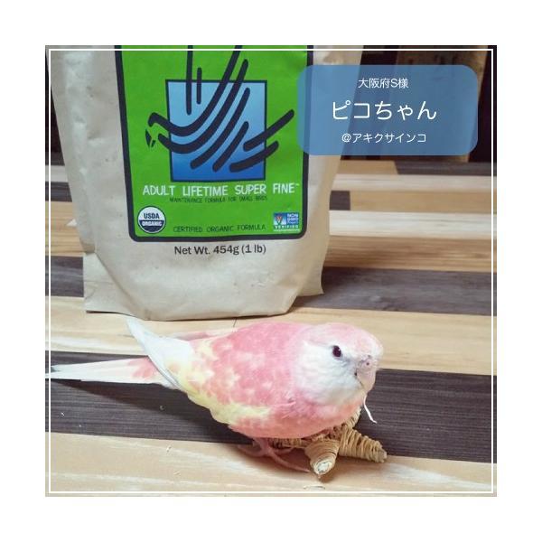 ハリソンバードフード ペレット/アダルトライフタイム スーパーファイン bird-style 03