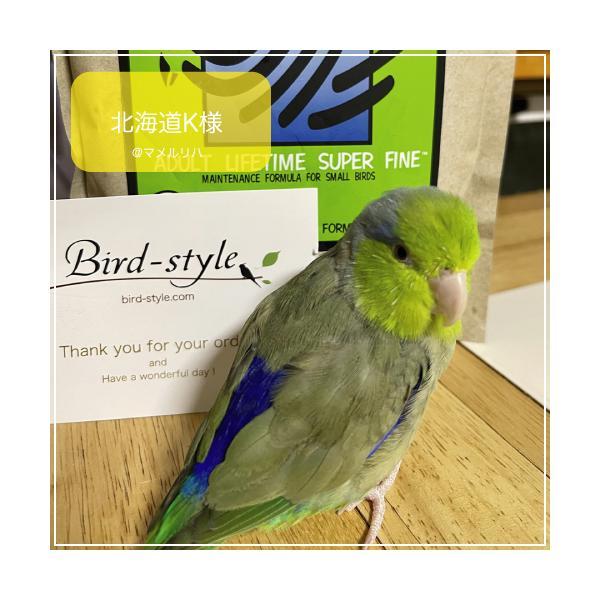 ハリソンバードフード ペレット/アダルトライフタイム スーパーファイン bird-style 04
