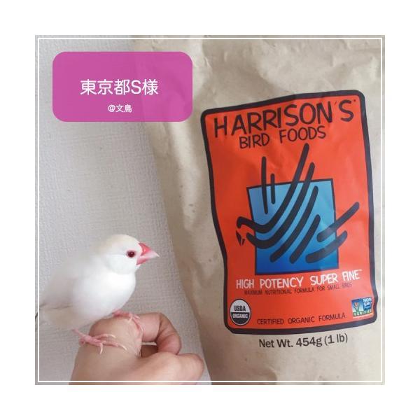 ハリソンバードフード ペレット/ハイポテンシー スーパーファイン|bird-style|09