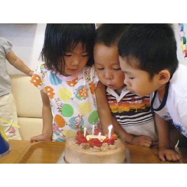 バースデーケーキ お誕生日ケーキ スイーツ ケーキ チョコ生苺ケーキ12号|birthdaycakes2004|05