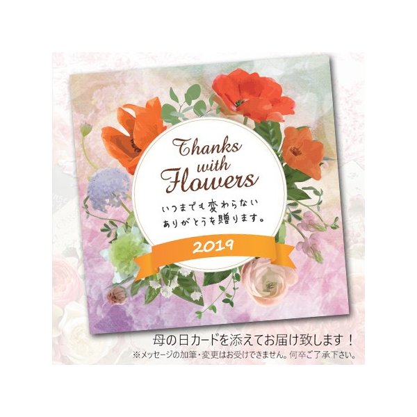 母の日プレゼント(ギフト)2018・あじさい「パリジェンヌ」(アジサイ鉢植え・鉢花)[母の日カード付・送料無料]|bishokuc|05