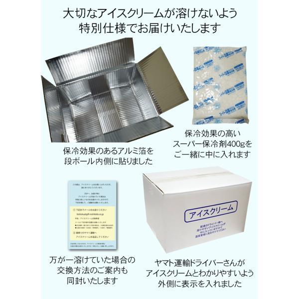 アイス福袋 第3弾 大手メーカー35〜42個のアイスクリームをぎっしり詰め合わせてお届け[送料無料]|bishokuc|05
