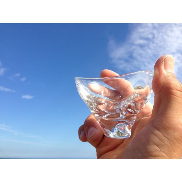 glass calico グラスキャリコ ハンドメイド ガラス酒器 ミナモ ぐい呑 ギフト おしゃれ bisyukiya 06