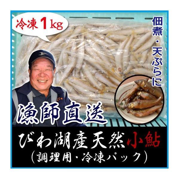 天然 小鮎 1000g 冷凍 調理用 琵琶湖産 滋賀県産 魚友商店 送料無料
