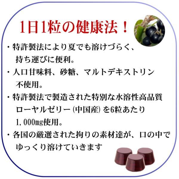 のど あめ ドロップ 蜂蜜 はちみつ ローヤルゼリー カシス 健康食品 国産 無添加 口臭 予防 改善  ブラック カラント エネルギー チャージ 体調管理 4箱セット|bj-direct|03