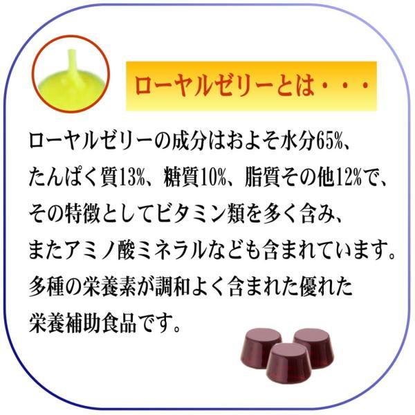 のど あめ ドロップ 蜂蜜 はちみつ ローヤルゼリー カシス 健康食品 国産 無添加 口臭 予防 改善  ブラック カラント エネルギー チャージ 体調管理 4箱セット|bj-direct|05