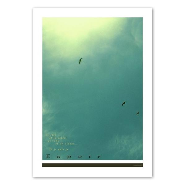 インテリアポスター A2サイズ 『Espoir』 フォト 自然 海鳥 人気 おしゃれポスター Interior Art Poster|blankwall